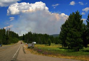 800px-Wildfire_in_Yellowstone_NP_produces_Pyrocumulus_cloud